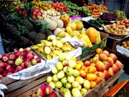 fruits web